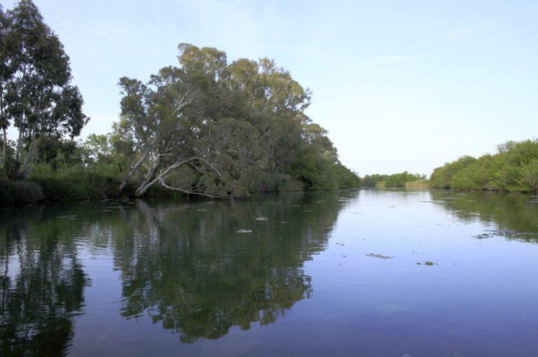A spasso per Siracusa: fiume