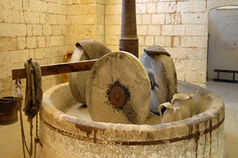 Abbazia Santa Maria di Cerrate: torchio