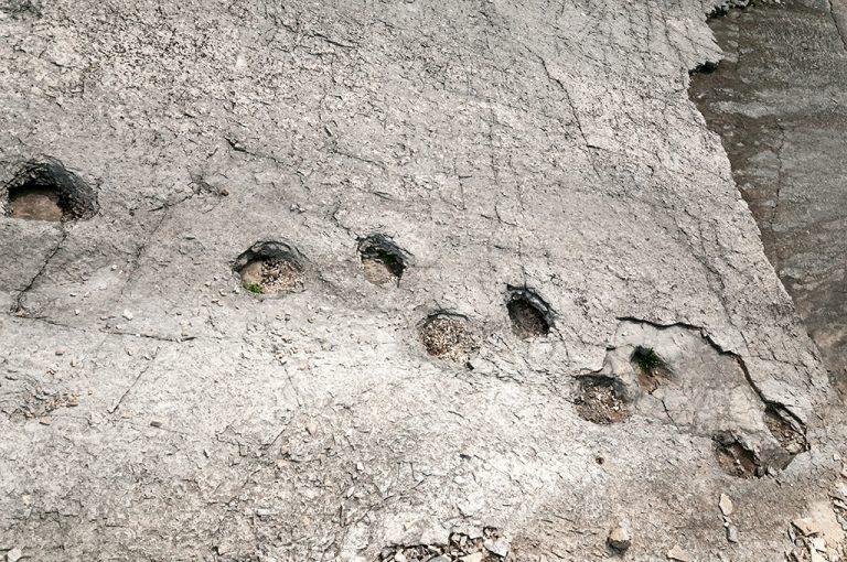 Paesaggi lunari_biotopo lavini di Marco