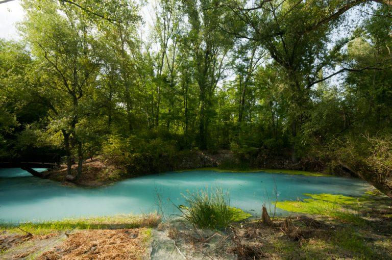 Sorgenti Lavino: laghetto