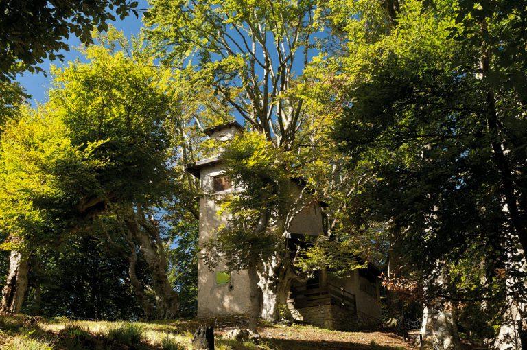 Alta Via Monti Lariani: roccolo Zerla