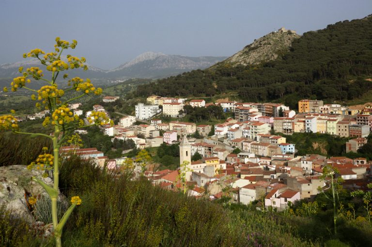 Bitti: panorama sul borgo