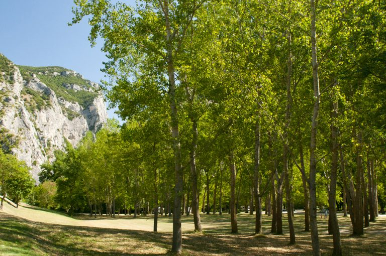 Gola del Furlo: parco