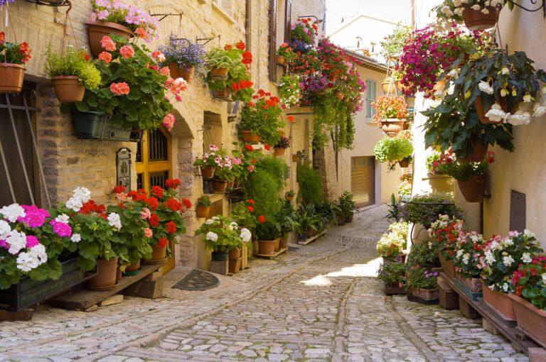 Camper Umbria e Marche: borgo spello