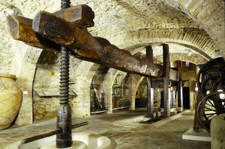 Torgiano: museo vino