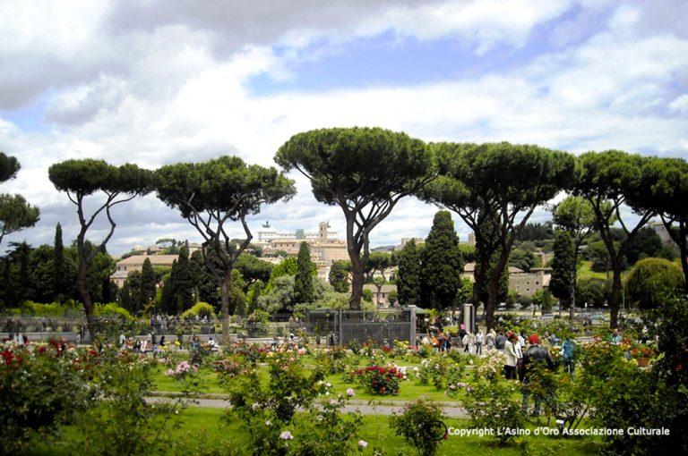 Roma segreta: roseto Avetino
