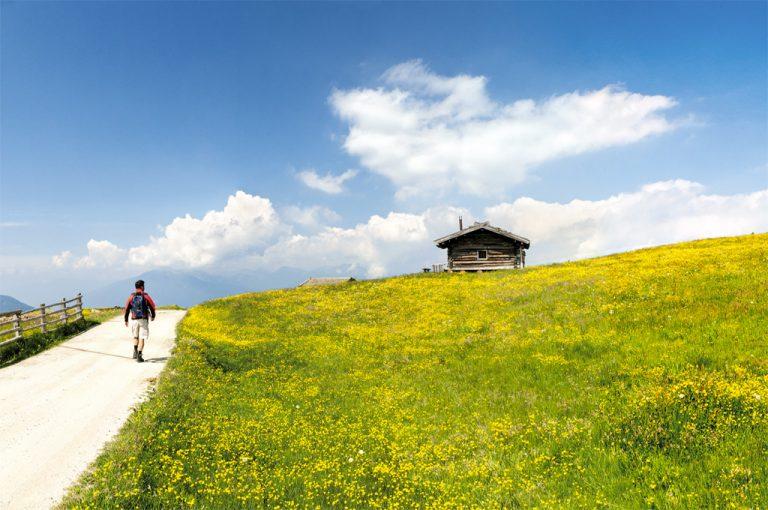 Val Pusteria: alpe Luson