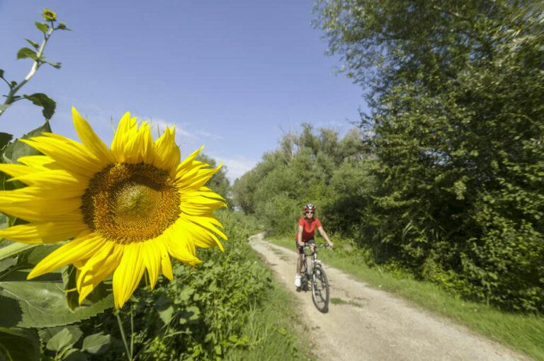 Un giro attorno a chiusi: in bici sul sentiero della bonifica